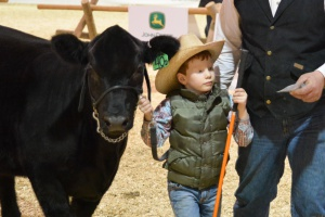 Results from Agribition