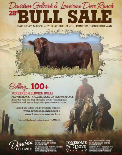 Davidson Gelbvieh and Lonesome Dove Bull Sale, March 4th, 2017. Hope to see you there!