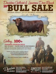 Click here to see the Davidson Gelbvieh 2017 Bull Sale catalogue.