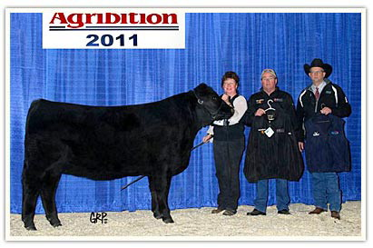 Grand Champion Female at the 2011 Canadian Western Agribition in Regina.