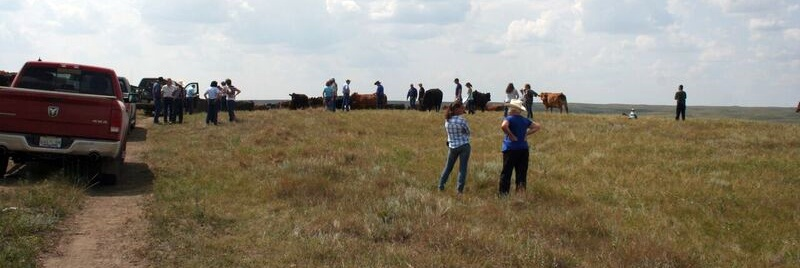 A good crowd joined us at the 2018 Pasture Tour.